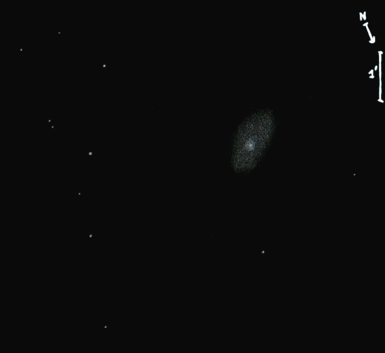 NGC1171obs6886.jpg