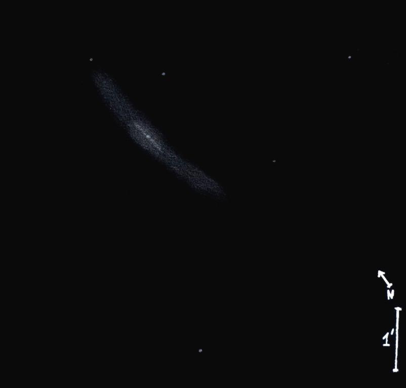 NGC3079obs6980.jpg