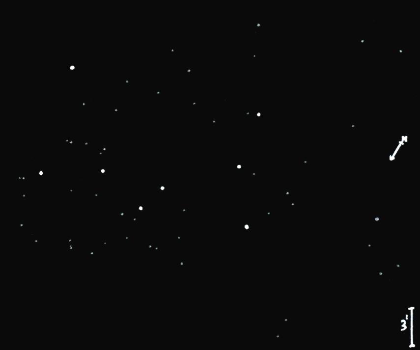 NGC1981obs7286.jpg