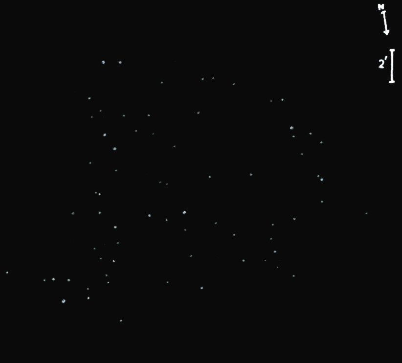 NGC2252obs7303.jpg