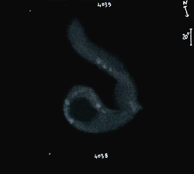 NGC4038_9obs8122.jpg