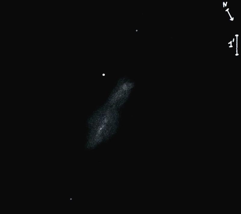 NGC7606obs8419.jpg