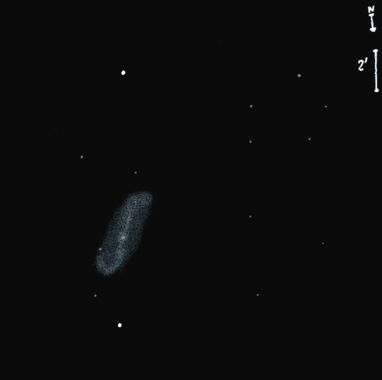 NGC1808obs8557.jpg