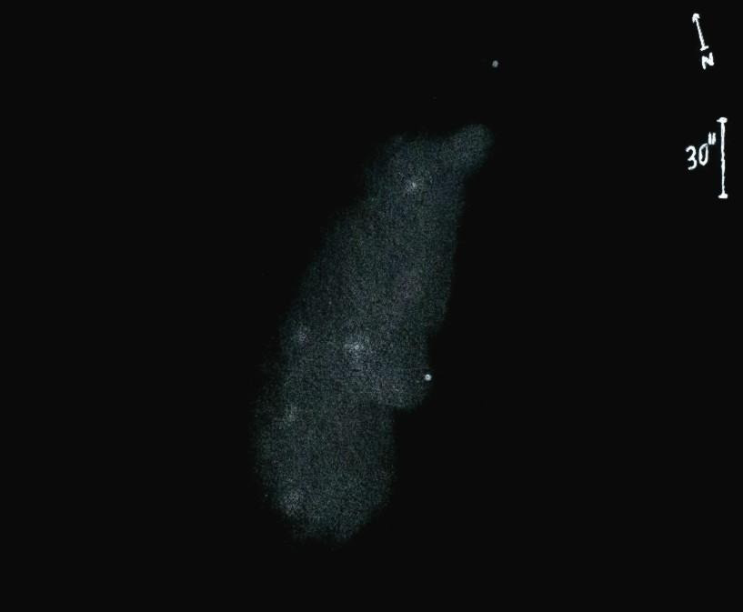 NGC2976obs8704.jpg
