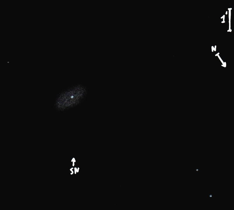 NGC7814_SN2021rhuobs9522.jpg