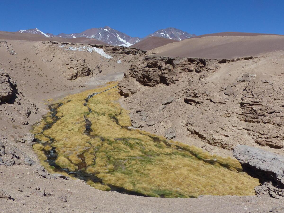 20181026_Copiapo_Atacama_Tres_Cruces_79.
