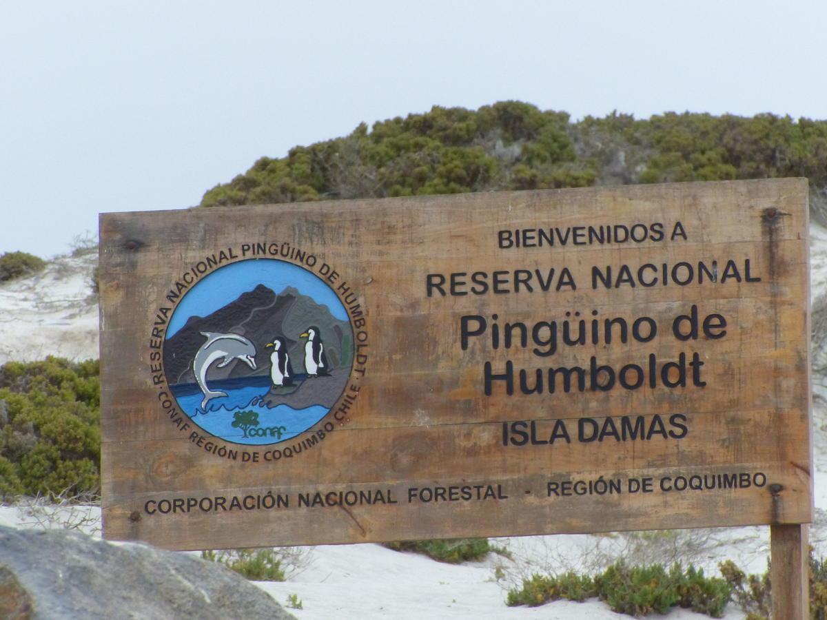 20181028_Reserve_de_Humboldt_47.jpg